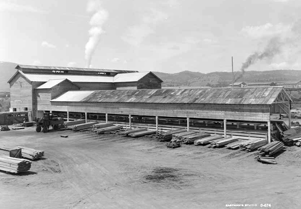 The Paul Bunyan Mill in 1950 From the Eastman Archive at UC Davis
