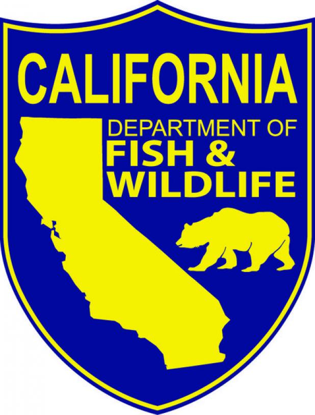 Cdfw to hold public workshop on phasing out lead for Department of fish and wildlife jobs