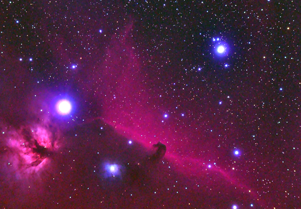 Bateson Observatory photo of the Horsehead Nebula and the surrounding area.