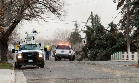 Dust and debris lash emergency crews as they deal with an enormous tree in utility lines at the corner of Mill and South Gay Street.