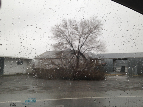 Diana's photo taken along Old Johnstonville Road during the storm.