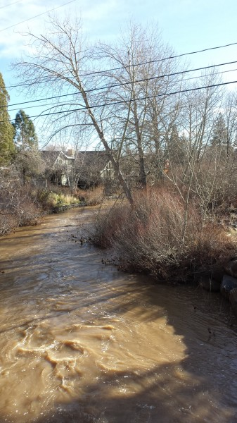 Tory took this picture of a swollen Susan River on Saturday.