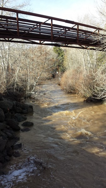 The Susan River at the Lassen Street bridge.