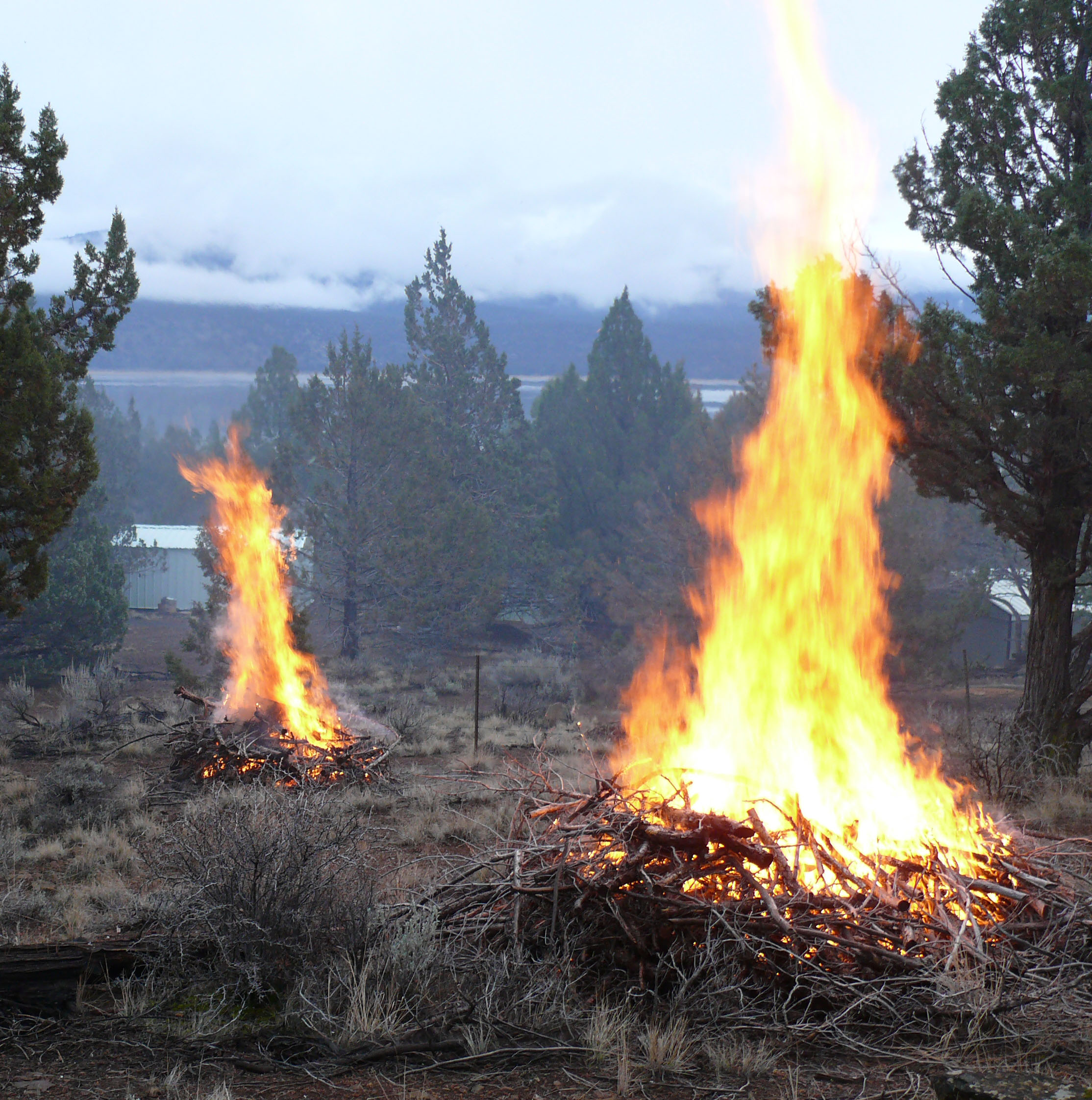 blm crews complete fire safety  u2013 land health project at